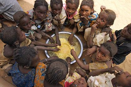 Сколько стоит голод?