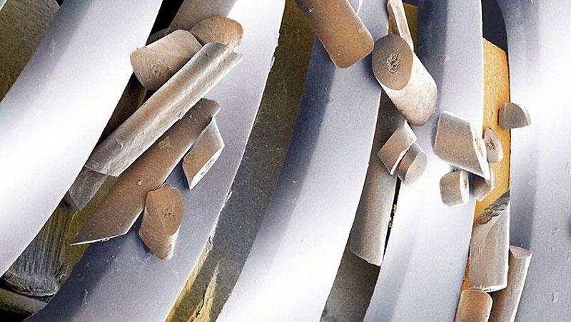 Волоски срезанные лезвиями электробритвы - Обычные вещи крупным планом