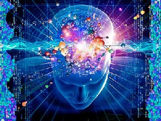Что происходит в мозге  когда рождается мысль