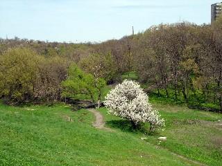 Весна в городе Торезе
