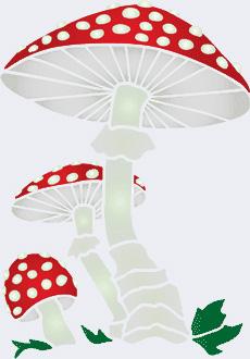 Откуда берется грибок. Профилактика лечения микозов - Форум Сириус - Торез