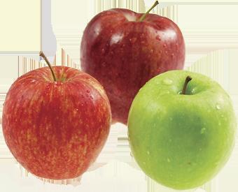 Яблоки. Самый родной украинский потребителю фрукт - скорая помощь при лишнем весе