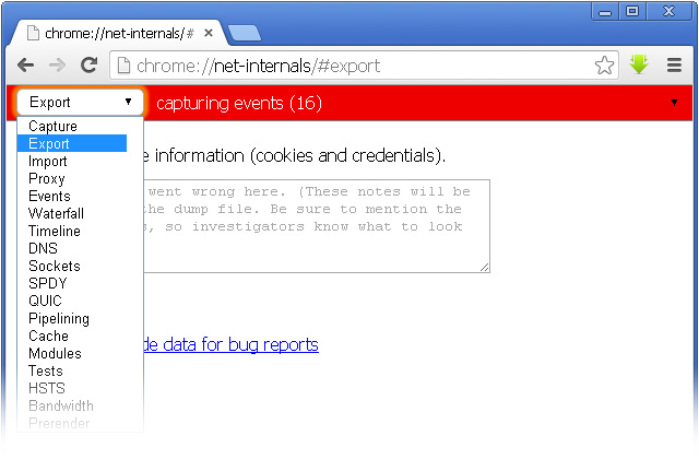 Страница разделов просмотра сетевых ресурсов - Тонкая настройкa Google Chrome