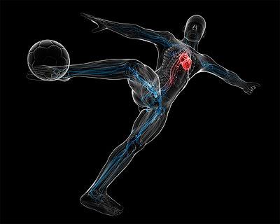 Тело футболиста