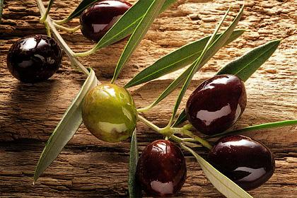 Целебные дары оливы