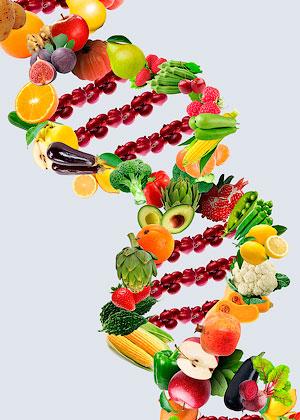 Диета по ДНК
