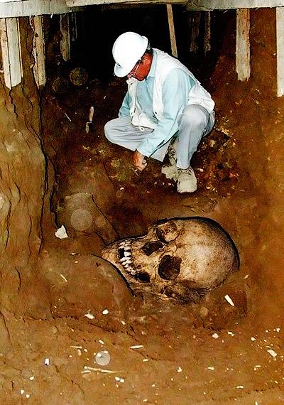 Археологи обнаружили в толще земли череп невероятных размеров - Находки останков огромных скелетов людей. Исчезнувшие великаны Америки - Форум Сириус - Торез