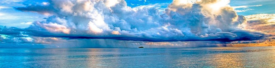 Морские элементы. Интересные факты мирового океана