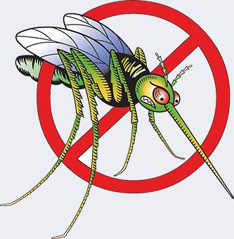 Тараканы, пауки, мухи, клопы, моль - борьба с бытовыми насекомыми - Форум Сириус - Торез
