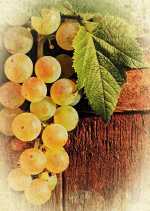 Виноградные грозди сладости