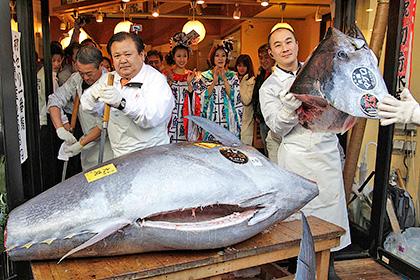 Полный тунец - много интересного о самой мясной рыбе