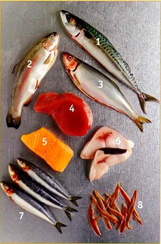 Рыбное разнообразие - Жирная рыба