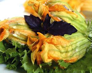 Фаршированные цветки кабачков - Кабачок - универсальный продукт