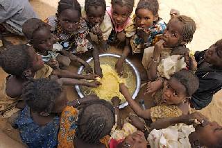Сколько стоит голод