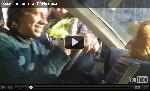 Вирусное видео вызвало массовый спрос на говорящих хомяков   Хомячок троллит ГАИшника