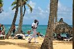 Пальмы берег Доминикана